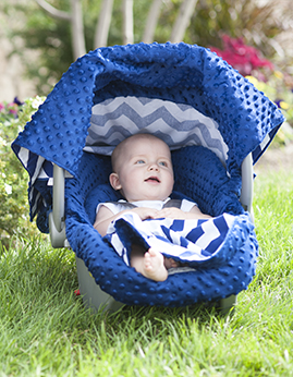Carseat Canopy Whole Caboodle - Jagger