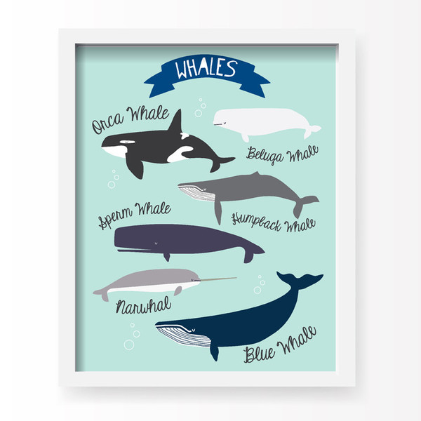 Lucy Darling I Love Whales Art Print