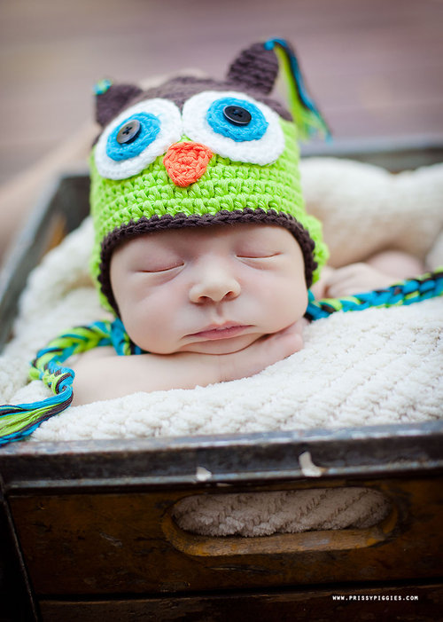 Brown & Green Owl Knit Hat