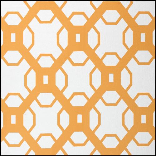 Desert Orange Imagination Square